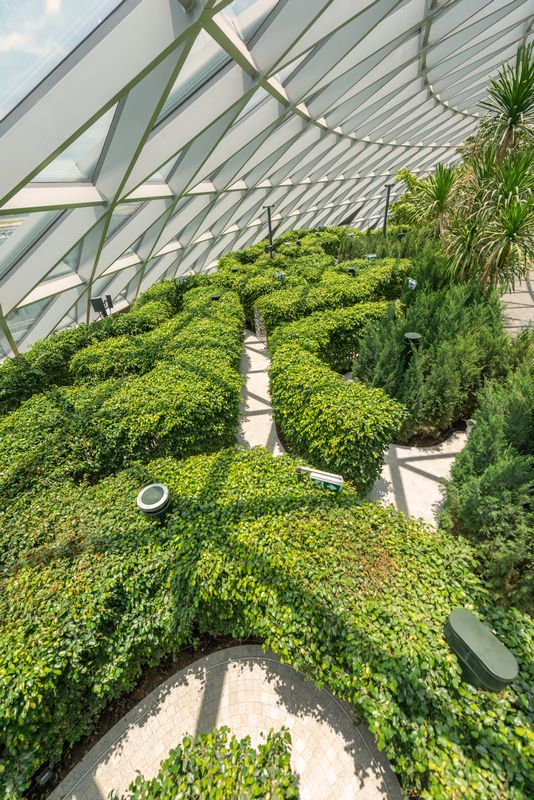 hk_c_Hedge Maze at Canopy Park_800px.jpg