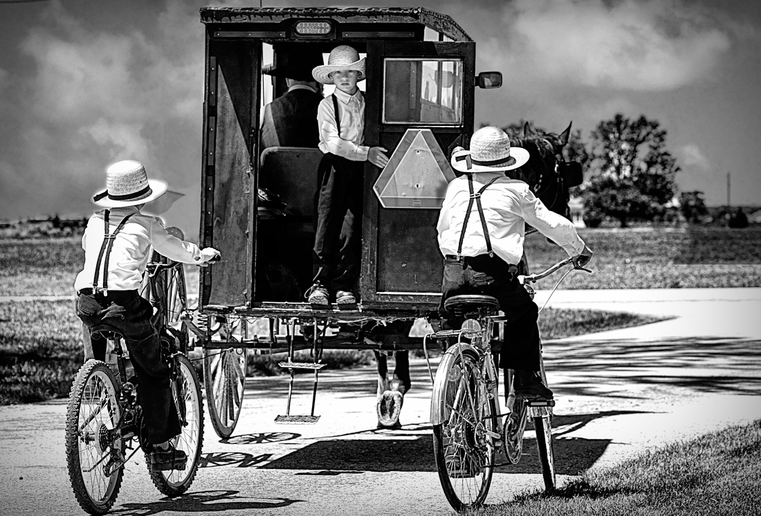 hk_c_Old Order Amish Children with Buggies-Chieko Tanemura.jpg