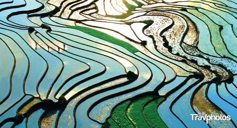 hk_c_blue, black, brown, abstract, painting, lao cai, terraces, green, sunlight, sapa (pxfuel.com).jpg