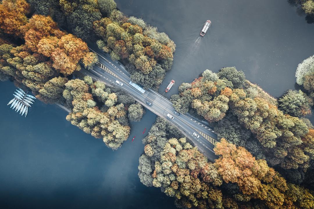 hk_c_4、Damon 杭州網紅打卡點,秋天還沒到,葉子黃了一半.jpeg