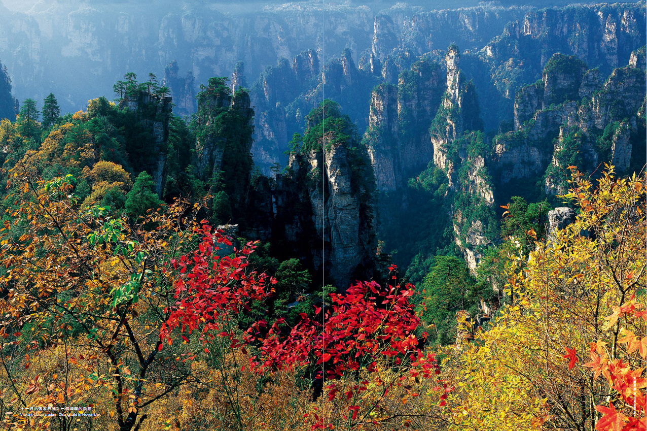 hk_c_十一月的張家界進入一個燦爛的季節.png