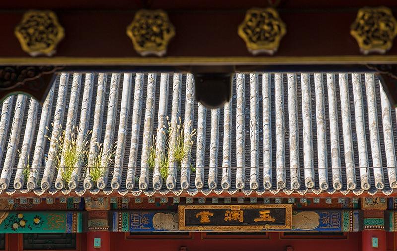 hk_c_50.jpg